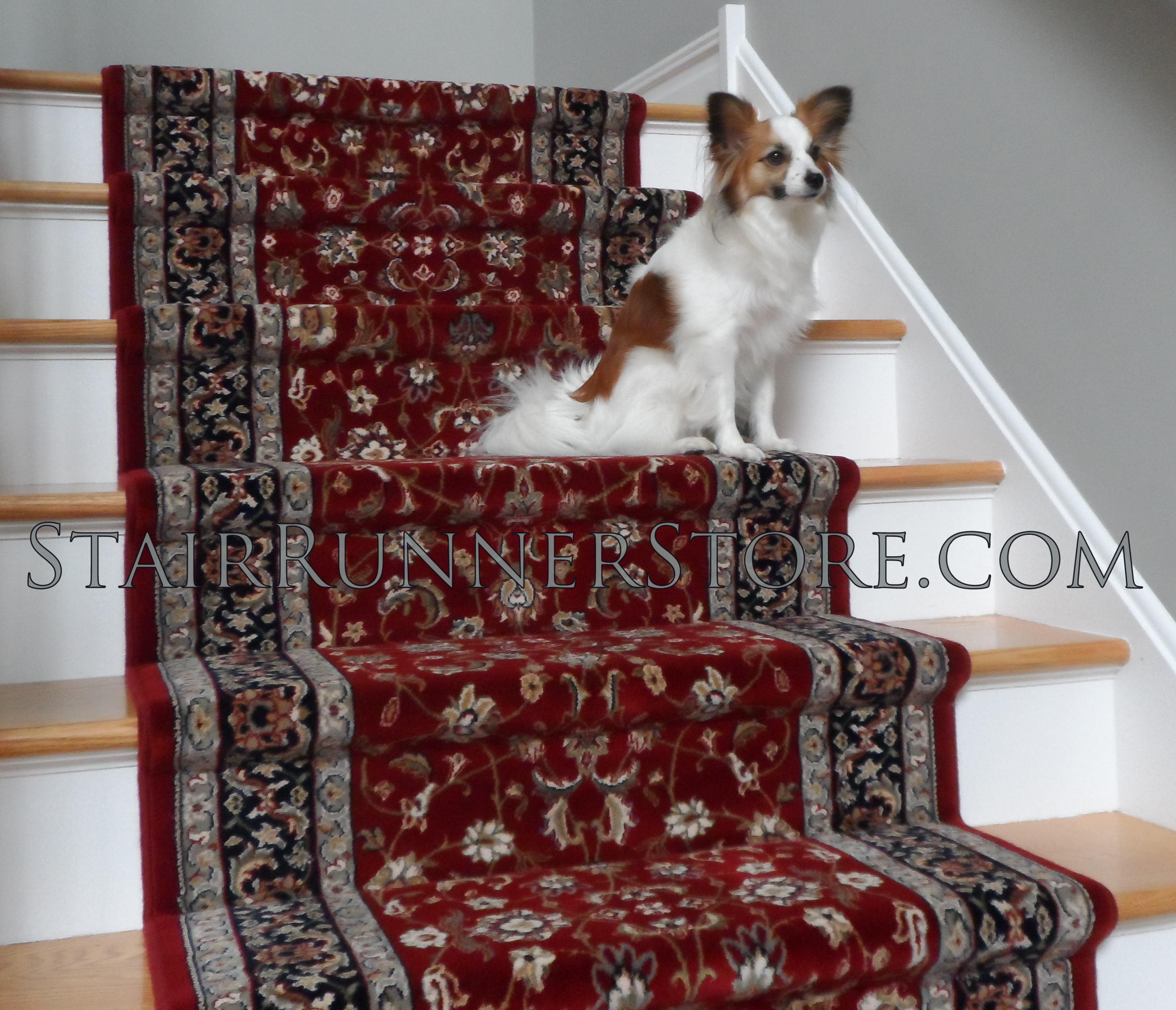 Stair Runner Installation Pets On Stairs 3412